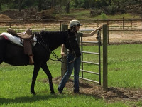 TRAIL HORSE TEST hosted by ROSE HILL RANCH great success!