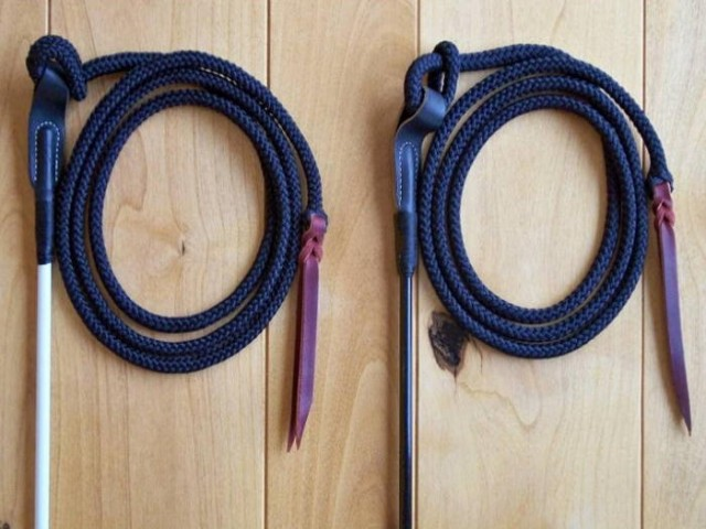 horse training stick and string