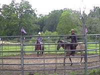 Colt starting begins on the ground and ends in a quiet saddle.